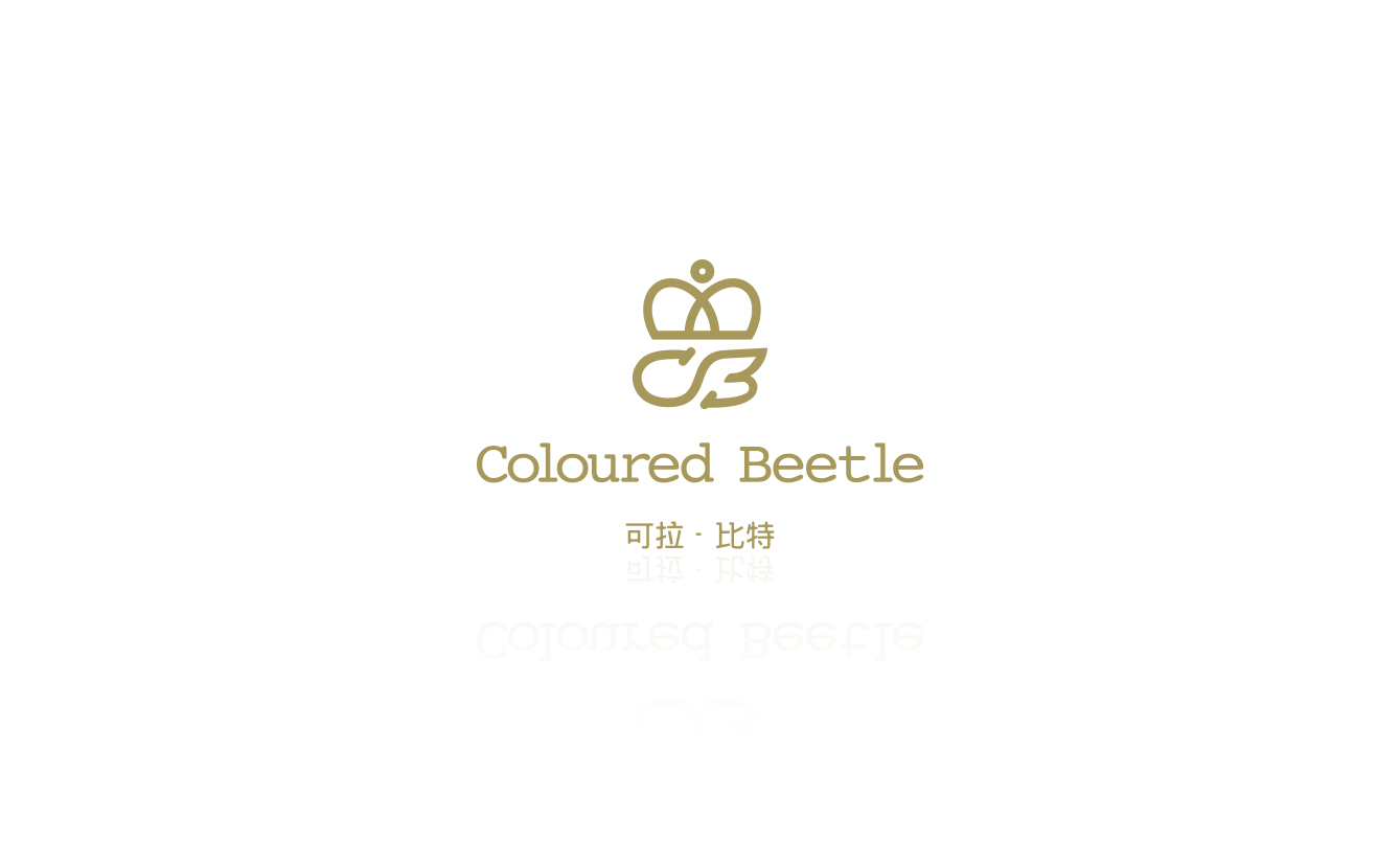 COLOURDE BEETLE